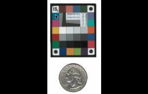 Color Chart-Rez Checker