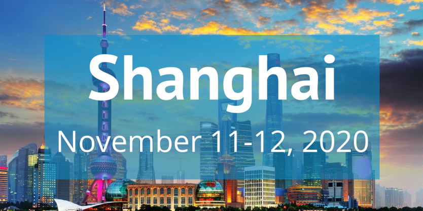 Shanghai 2020 training image